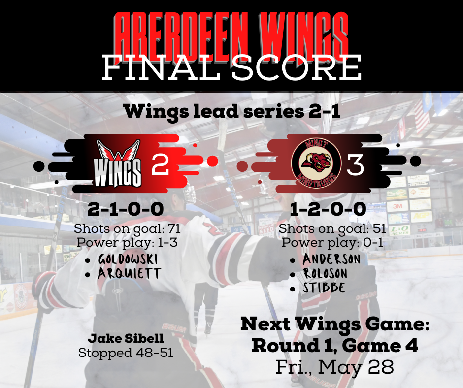 Wings fall 3-2 in double overtime, lead series 2-1